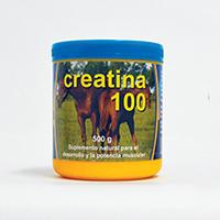 Creatina 100